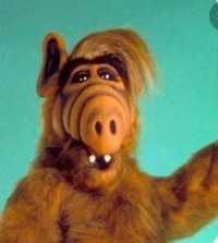 Image ALF (The Animated Series)